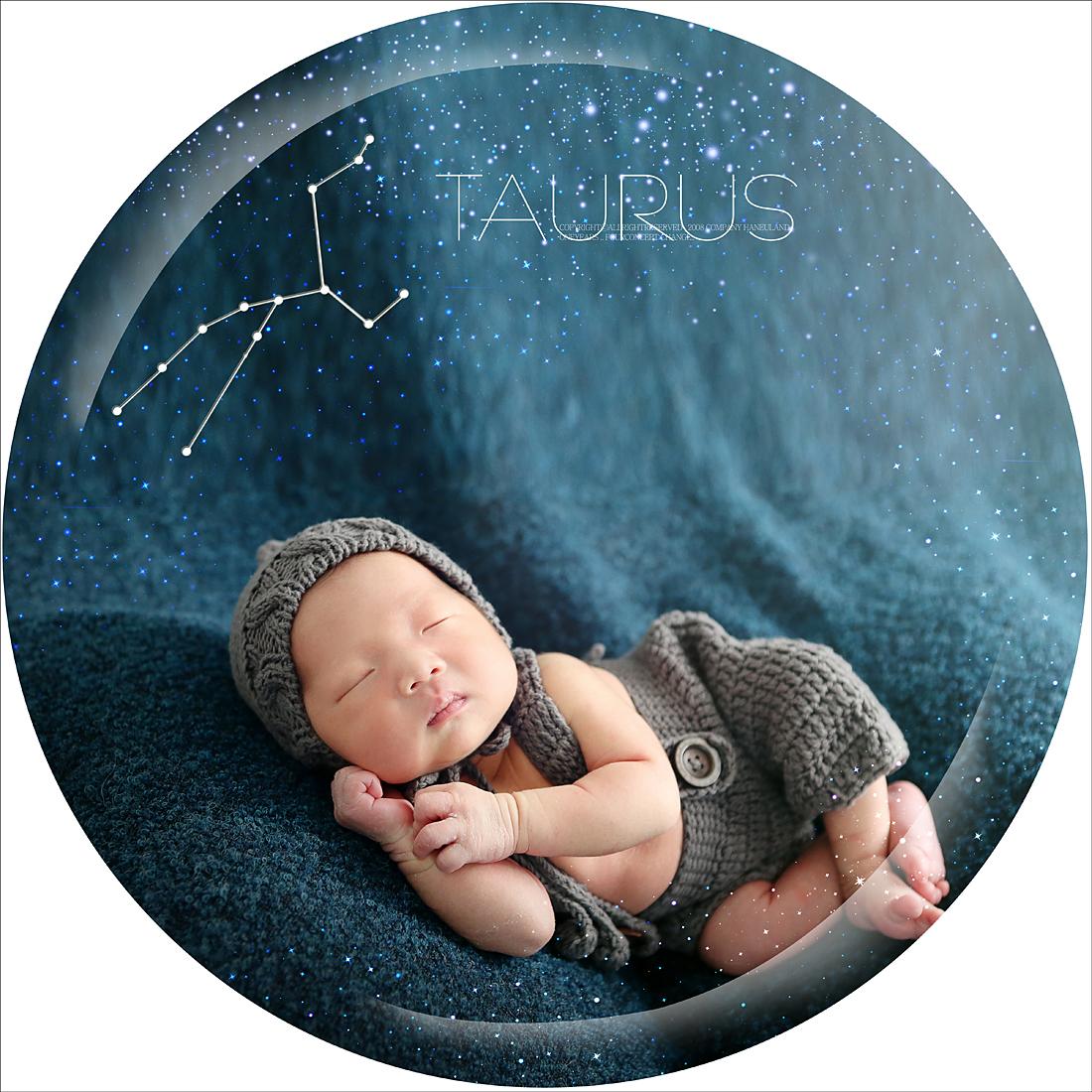 황소자리 별자리 24x24 사본.jpg